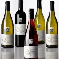 Wijnvakanties